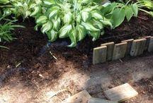Garden bed hedge
