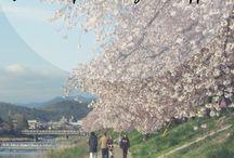 Hitoritabi.it / hitoritabi.it | Cultures through languages | Blog about Japan, language learning, learning Japanese, Japanese culture, Sweden, Swedish, life abroad, French, English, Italian, language study