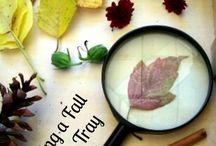 Table sciences d'automne