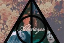 Harry Potter❣ / Harry potter<3