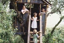 Case sugli alberi (treehouses)