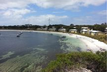 Rottnest Island / Family friendly things to do on Rottnest Island with kids