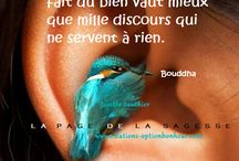 citation de la sagesse