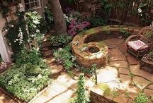 Yard/landscaping / by Mary Beth Fox