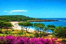 Beautiful Sites