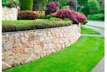 Proyectos que florecen / Logra el detallado y mantenimiento de tus jardines con la herramienta EVANS ideal. ¡Contáctanos!