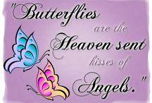 Butterflies  / by Lyn