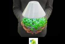 Ecología / Ecology / Reciclado / Recycling / by Gustavo Dalmasso