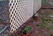 kerítések
