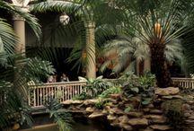 Zoo nostalgie