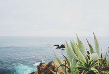 tumblr serenity