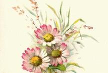 Deco-transf.kwiaty