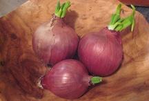 veggies / by Andrea Blackwell