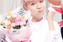 Seungkwan(seventeen)
