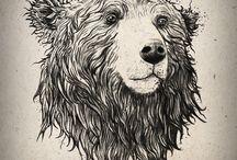 Creative Bears