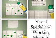 visual task