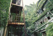 ruins / 廃墟