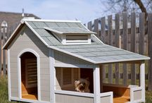 The Dog House (and cat house, chicken house, etc)