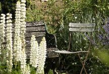Zahrada Horky (inspirace)