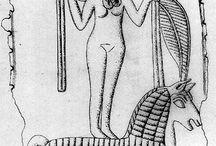 Phaenician