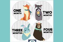 Gender Neutral Baby Month Stickers