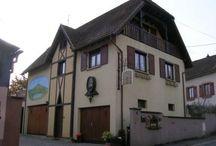 Sud de la Route des Vins d'Alsace / Entre Thann et Orschwihr, le vignoble se fait plus escarpé. Autour de Thann et de Guebwiller, les vignes se concentrent sur les versants pentus et imposent souvent aux vendangeurs de s'encorder !
