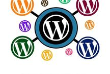 WordPress Multisite setup services