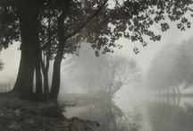pgotography black white