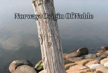 Norway:Origin Of Noble