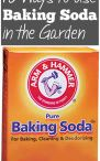 Baking Soda uses in Garden!