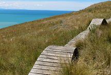 Nya Zeeland!! / Saker att göra och platser att se i Nya Zeeland