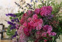 Wildflowers - Flori de gradina si salbatice