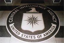 UN RAPPORTO UFFICIALE DELLA CIA AFFERMA CHE 23 SOLDATI SONO STATI TRASFORMATI IN PIETRADOPO CHE..