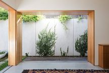 interior _ window
