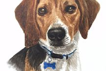 Pet Portraits / Hand drawn and painted portraits of your pets!
