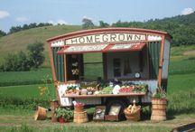 Mimi Avocado Farm Stand possibilities