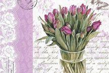 tavasz virágai