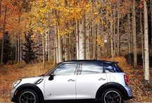 Share your favorite autumn motoring adventures in this month's #PhotoChallenge - just tag #MINIFoliage to enter. - photo from miniusa