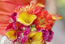Tasha & Dan / July 2014 bright summery orange-reds and oranges, reds and yellows