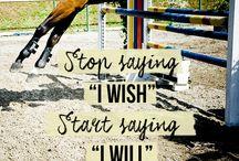 Equestrian motivation