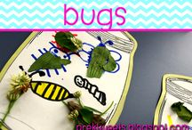 Bugs / Ideas and resources for pre-k and kindergarten bug and insect study.