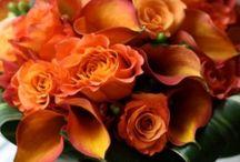 Bouquets and floral arrangements