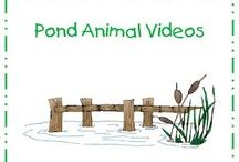 Pond Explorations / by Mandy Shelton-Johnstone