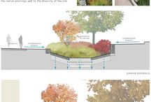 Urban planting
