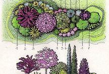 группы цветников