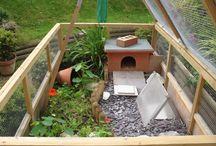 Tortoise? Tortoise! / Indoor and outdoor tortoise housing
