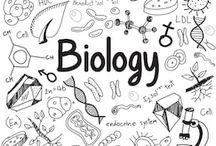 Science doodles