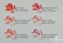 Lotus blossom / Stampin up Saleabration