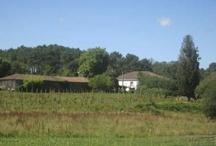 Entorno de la Casa Rural Pazo da Pena / Nuestra casa de turismo rural  Our rural house  www.pazodapena.com
