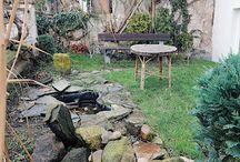 zahrada a okolí domu